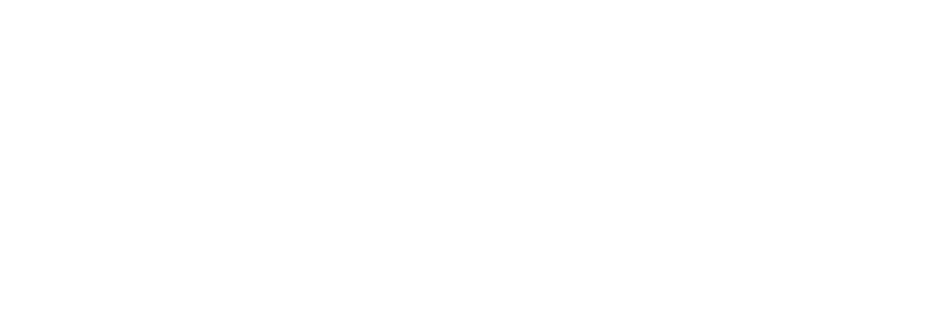 FLARE Grill Shop